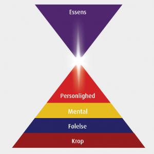 Figur 1. De fem psykologiske niveauer i mennesket